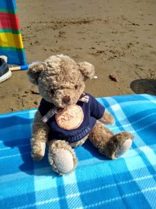 The Roy Newton Furniture Harry mascot relaxing on the beach!